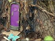 small-purple-door-in-tree